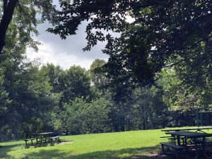 George Rogers Clark Park on Poplar Level Road makes a fine venue for a socially distanced picnic.